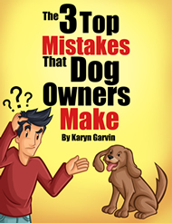3 Mistakes Dog Owners Make Cover